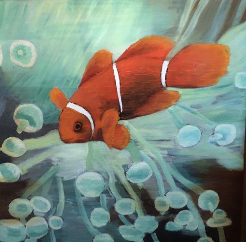 Clownfish  60 x 60