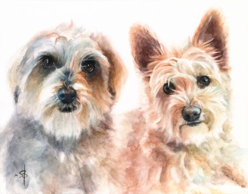 Fred's Dogs