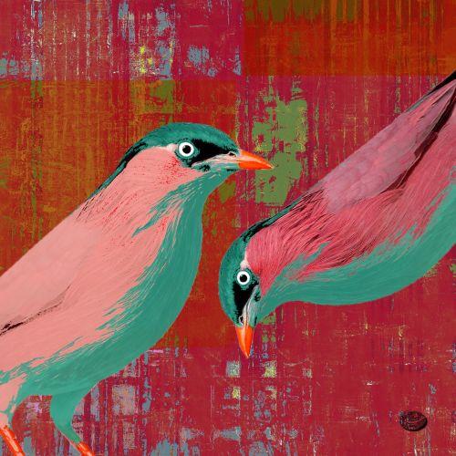 the 30 bird project III