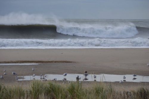 Beachscape A31